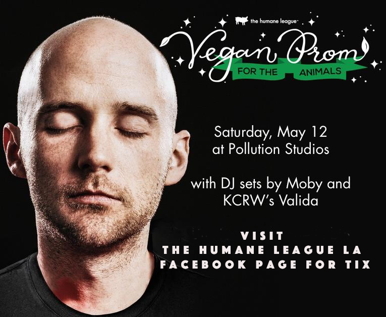 vegan prom photo copy